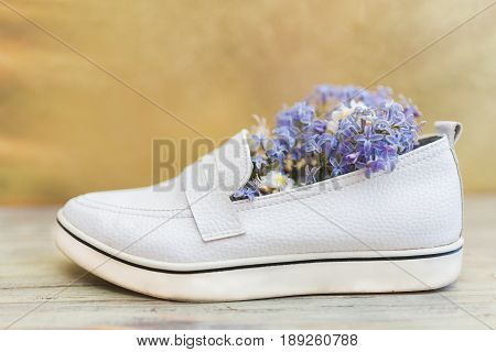 Female white leather shoes and small white and purple flowers inside on a gold and white wooden background.