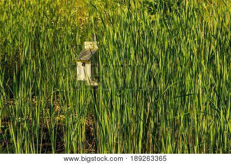 a bird house on a pole at the park