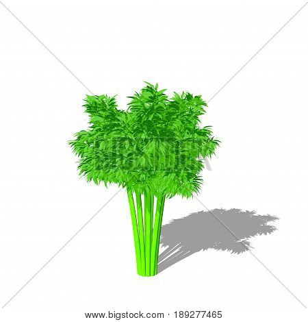 Bamboo tree. Isolated on white background. 3D rendering illustration. Cartoon style.