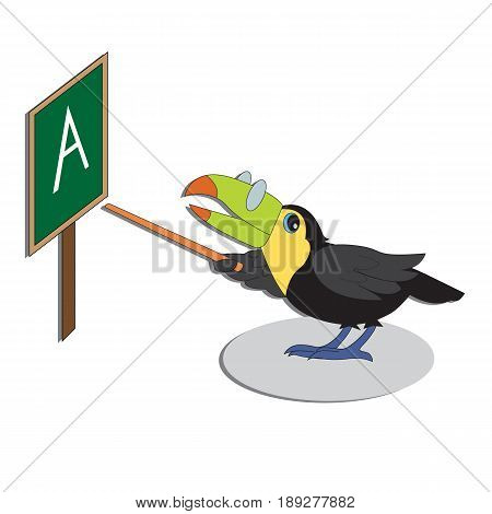 Vector character illustration. Cute bird toucan. Cartoon personage on white background.