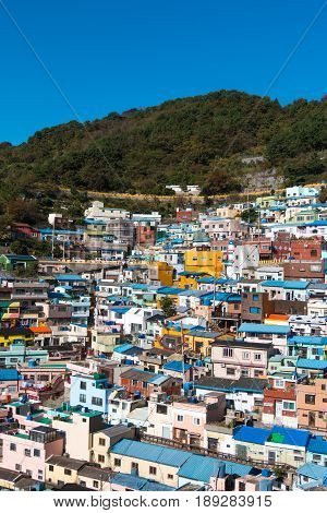 Busan Gamcheon Culture Village colorful and lovely village in South Korea with green mountain and clear blue sky as background