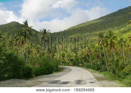 Lush green roadside scenery, Davao Oriental Lush green scenery meets travelers to the province of Davao Oriental, Philippines.