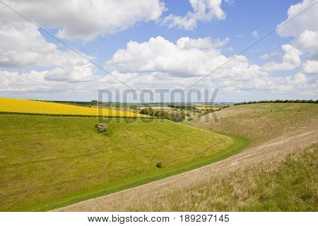 Summer Agricultural Valley