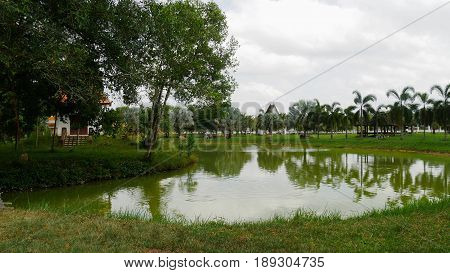 Pond with palms reflection in Narathiwat, Thailand A pond reflecting palm trees provides a good place for meditation in Phra Buddha Taksin Mingmongkol