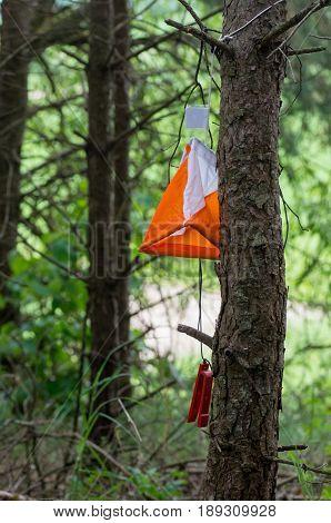Orienteering Flag