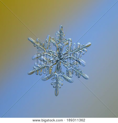 Real snowflake macro photo: stellar dendrite snow crystal with fine symmetry, six long, elegant arms with side branches. Snowflake glitters on smooth yellow - blue gradient background in cold light.