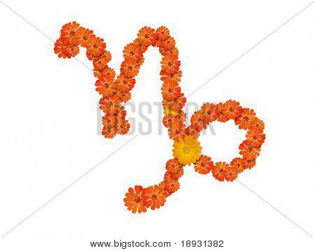 Capricorn, sign of the zodiac