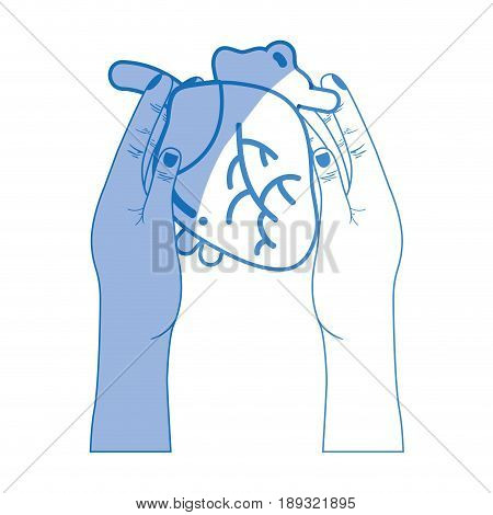 silhouette heart organ to blood circulation in the hands vector illustration