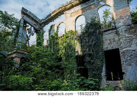 Overgrown ruined wall of abandoned mansion in Abkhazia