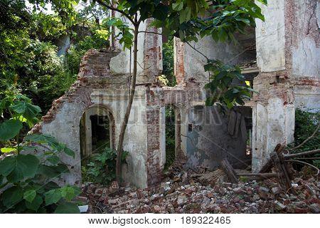 Overgrown ruins of abandoned mansion, Abkhazia, Georgia