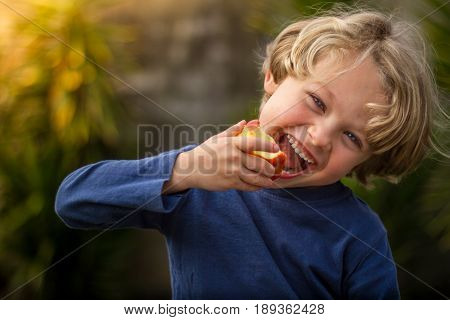 A blonde haired 5 year old child eating an apple and smiling at sunset