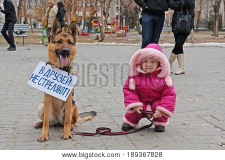 Volgograd Russia - March 31 2012: Little girl with dog with table (translated from the Russian