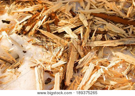 Wood Sawdust Background Closeup, Top View