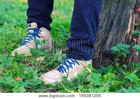 Boy Sit In The Forest