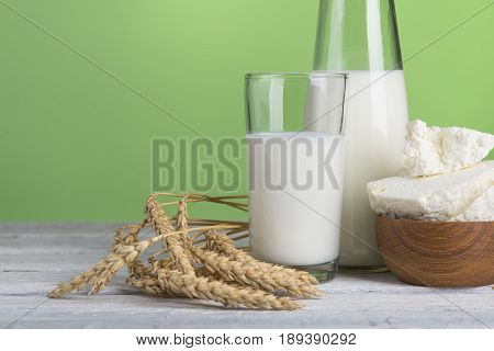 Protein products cheese cream milk