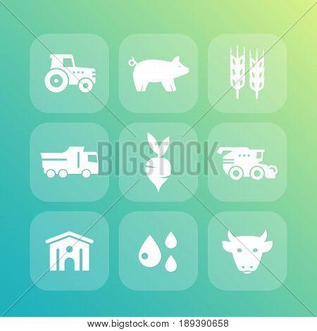 Agriculture, farming icons set, cattle raising, hangar, harvest, agrimotor, combine harvester