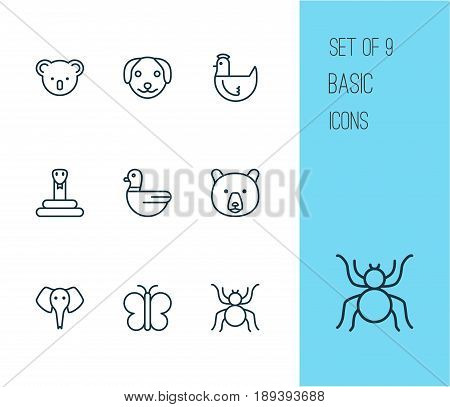 Zoology Icons Set. Collection Of Spider, Grizzly, Hen And Other Elements. Also Includes Symbols Such As Koala, Serpent, Duck.