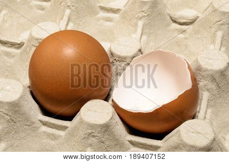 fresh brown egg and egg shell in an egg box