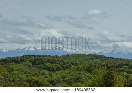 Beautiful landscape of spring nature with green glade and forest in  Plana mountain tovard Rila mountain, Bulgaria