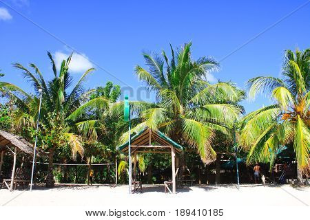 White sand beach against clear blue sky with tall palm coconut trees and beach huts