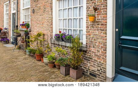 Varied pots and plants in front of the facade of the historic beguinage in the Dutch of Breda North Brabant. It's a warm day in the spring season.