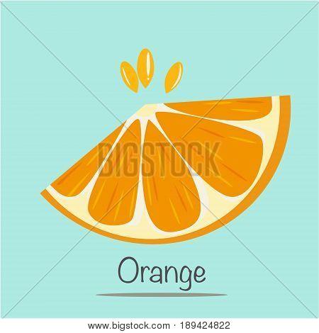 Slice Orange Vector Illustration. fruit and vegetable
