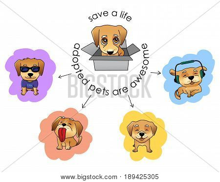 Adopt a pet vector illustration, nice sad puppy in a box and the same puppy happy when adopted