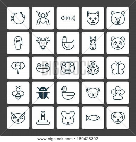Zoology Icons Set. Collection Of Spider, Moth, Bear And Other Elements. Also Includes Symbols Such As Pussy, Rabbit, Bug.