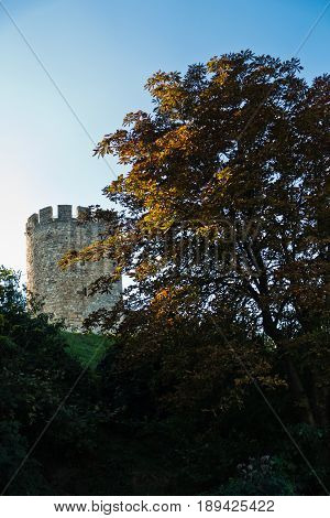 Kalemegdan fortress tower on a hill, view from a park behind the trees, Belgrade, Serbia poster