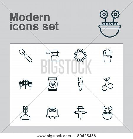 Icons Set. Collection Of Wheat, Sweet Berry, Root And Other Elements. Also Includes Symbols Such As Crop, Scapula, Stump.