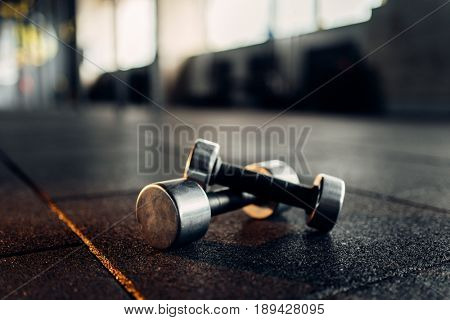 Dumbbells on rubber floor closeup, fitness club