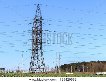 electrical powerlines in yellow field of rapeseed