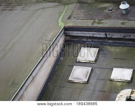 Mold On Flat Roof