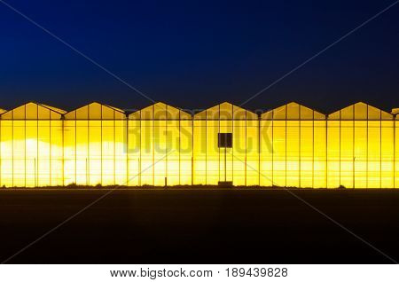 Greenhouse plant at night. Night landscape luminous glass construction. Silhouette of road signs on a background of a facade of a hothouse