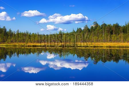 Summer landscape - pure lake with forest and sky reflection on a water at sunny day. Russia Republic of Karelia.