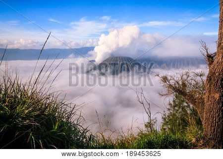View of Bromo Mountain, East Java, Indonesia