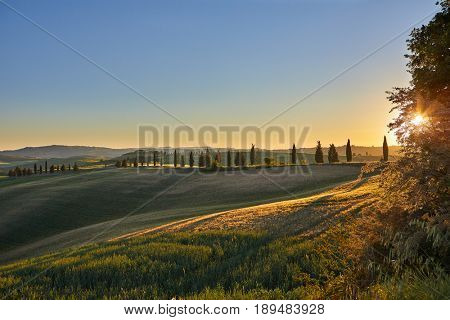 Panoramic view of a spring day in the Italian rural landscape.
