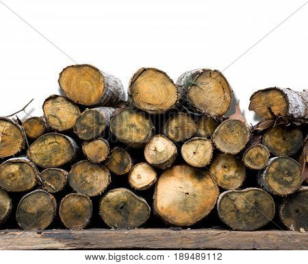 Natural wooden logs stacked. pile of wood logs with nature climber trees on wall background.