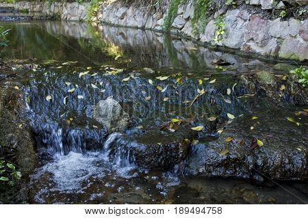 Water from a stream gently flowing over moss covered rocks