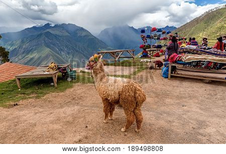 cusco, Peru- March 14, 2017: Street vendors in Cusco Peru selling traditional clothes