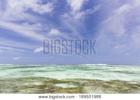 Snorkelers In La Digue, Seychelles