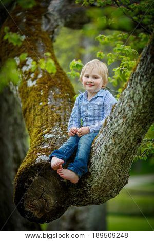 A shy child sits on the trunk of a large old tree covered with moss in a spring green forest
