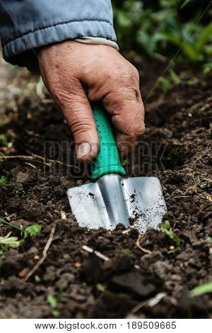 A woman's hand digs soil and soil with a shovel. Close-up Concept of gardening gardening.