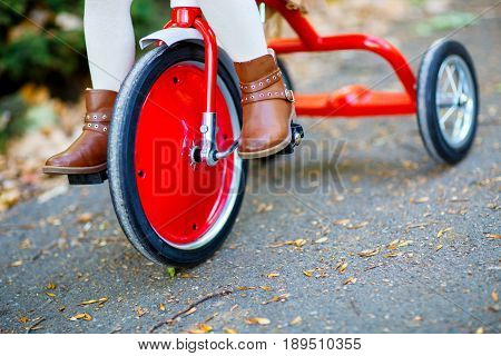 Shod in the brown shoes of the child's foot press the pedal of a shiny red tricycle that rolls along an asphalt path strewn with yellow leaves