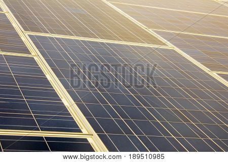 Closeup of silicon solar photovoltaic blue panel with white grid and some yellow sun light