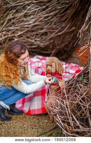 woman threw a plaid over her shoulders and played with her dressed poodle in the autumn park