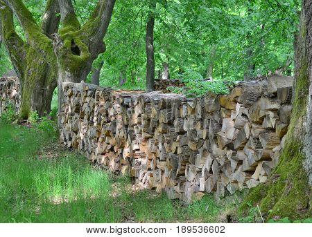 Traditional storage timber southern Bohemia . Czech Republic