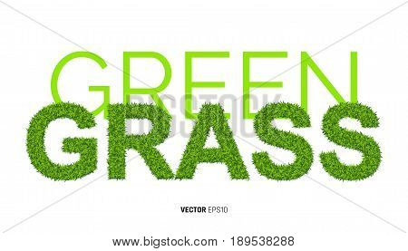 Word GRASS Made of Green Grass Textute. 3d Illustration on White Background