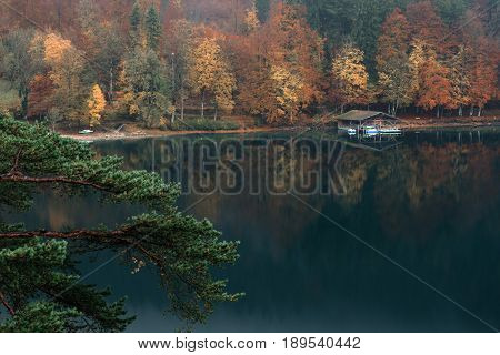 Panoramic view of scenic idyllic autumn landscape in the Bavarian Alps at famous mountain lake Alpsee Fussen Allgau Upper Bavaria Germany