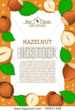 Rectangle brown frame and cartoon hazelnut nut and leaves. Vector card illustration. Filbert, walnut in the shell, whole, shelled for design of food packaging breakfast, detox diet, menu, snack